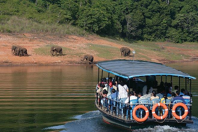 Boat Ride in Lake Periyar