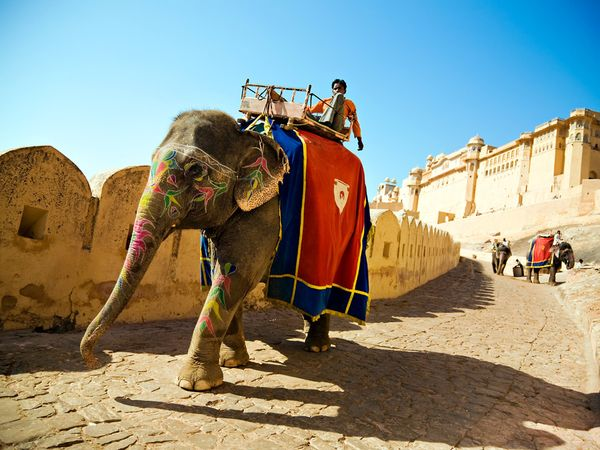 Elephant ride to the fort