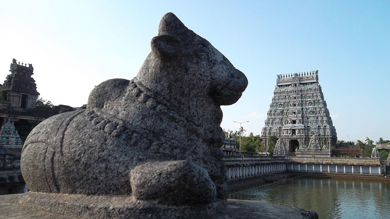 Nandi at Nataraja Temple