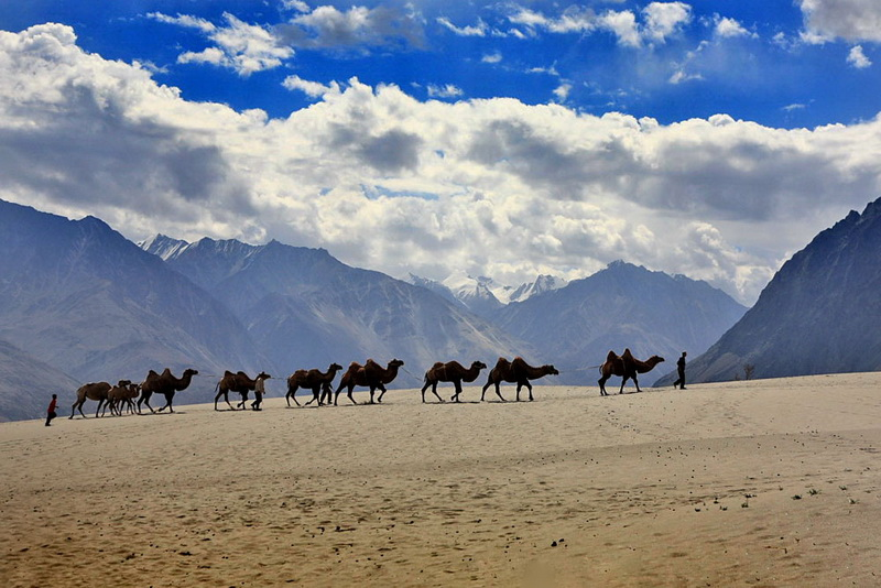 nubra-valley-leh
