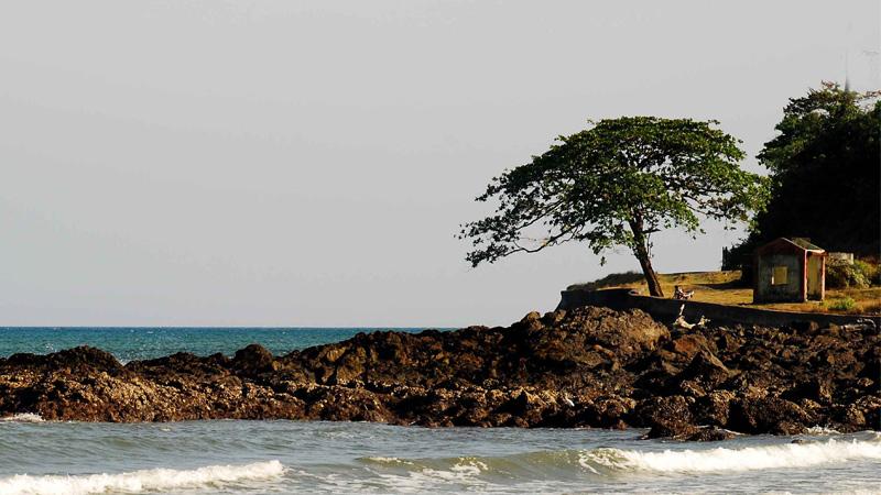 Corbyns Cove Beach