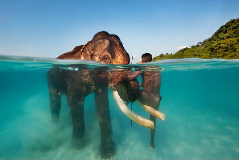 Elephant Beach Havelock Island