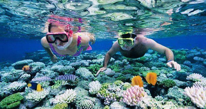 coral island andaman