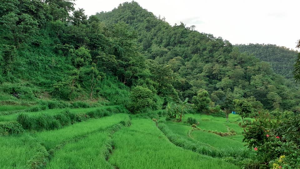 Maral Village Rishikesh Uttrakhand 2