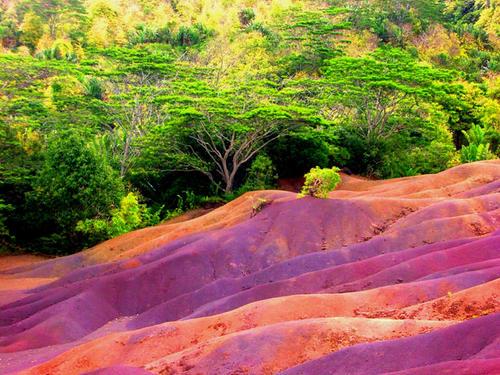 seven-colored earth